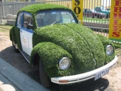 Truly, a green car